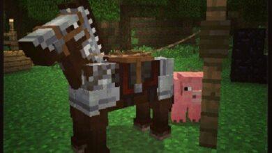Photo of Minecraft 1.6, un nouveau Launcher, des chevaux et des saisons !