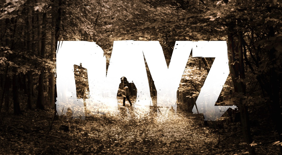 Photo de [Test]DayZ, une Early Access à s'en mordre les doigts !