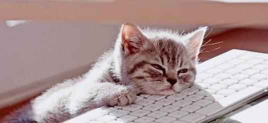 chat-ennui