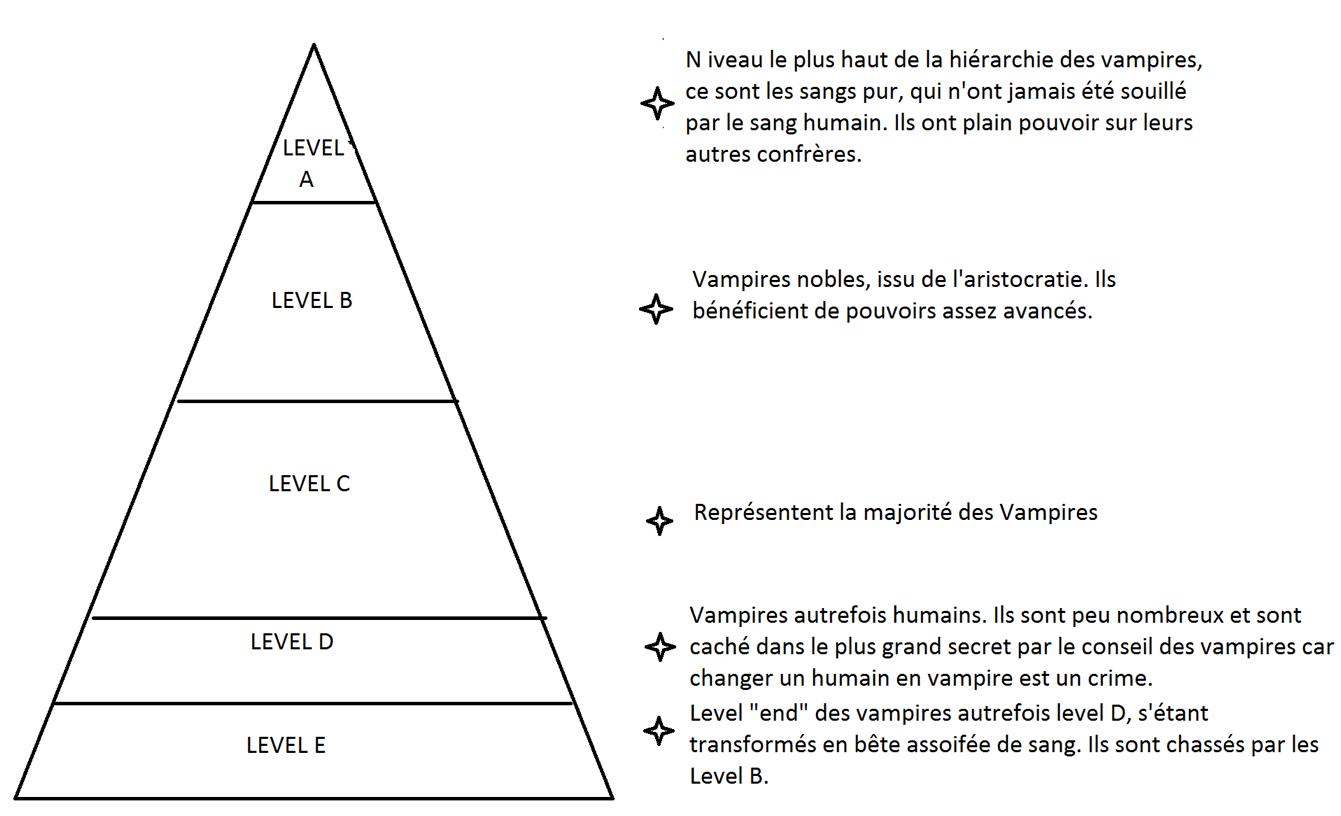 hiérarche Vampire Knight