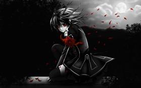 vampire-knight-20140722230844-53ce8c8c33247