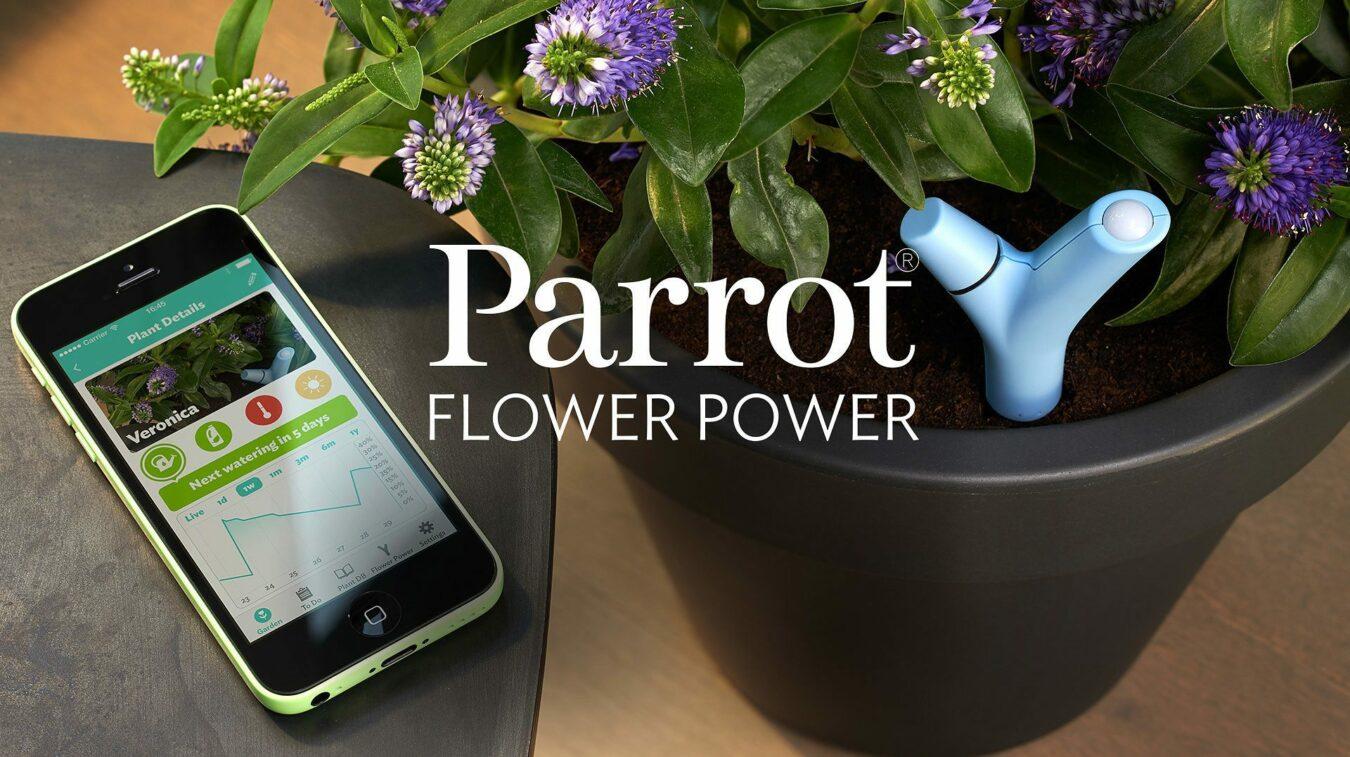 Photo of [TEST] Flower Power de Parrot, la main verte 2.0
