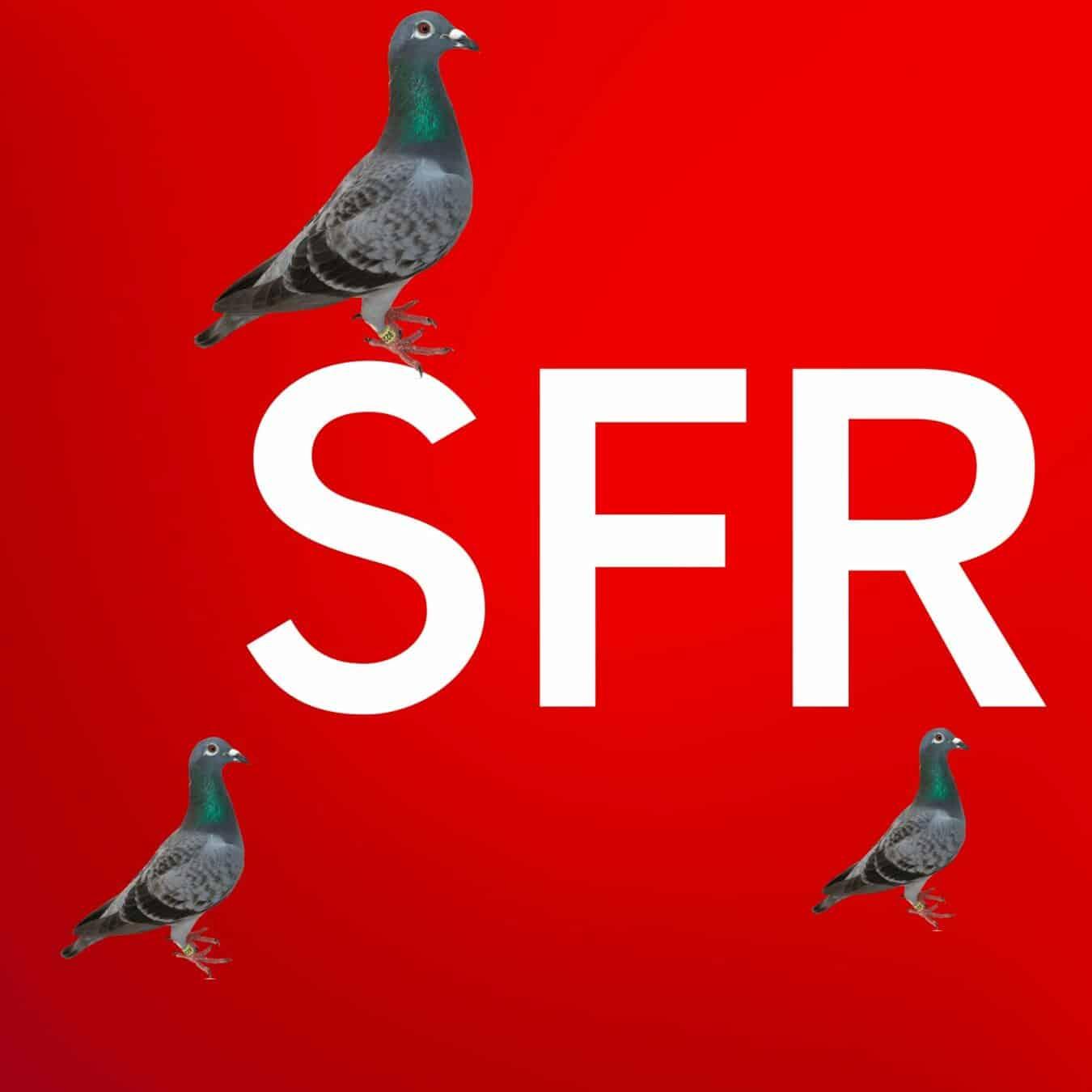 Photo of [ACTU] Comment gagner de l'argent chez SFR ? Une nouvelle astuce !