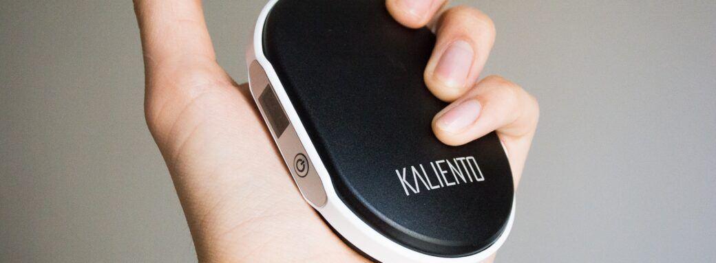 Avis du BEQUIPE Kaliento