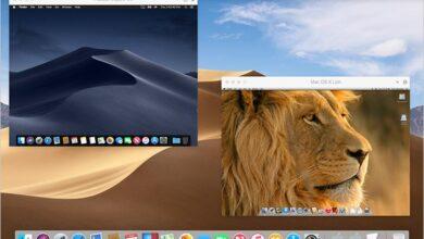 Photo de Actu – Parallels Desktop passe dans sa version 14