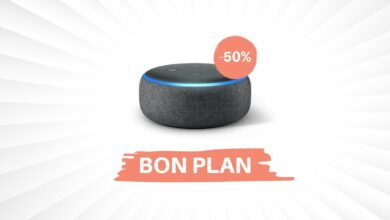 Photo de Bon Plan – 50% de réduction sur l'Amazon Echo Dot et Input !