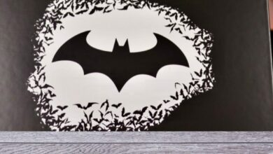 Photo de Wootbox Batman Collector – Les fans vont adorer