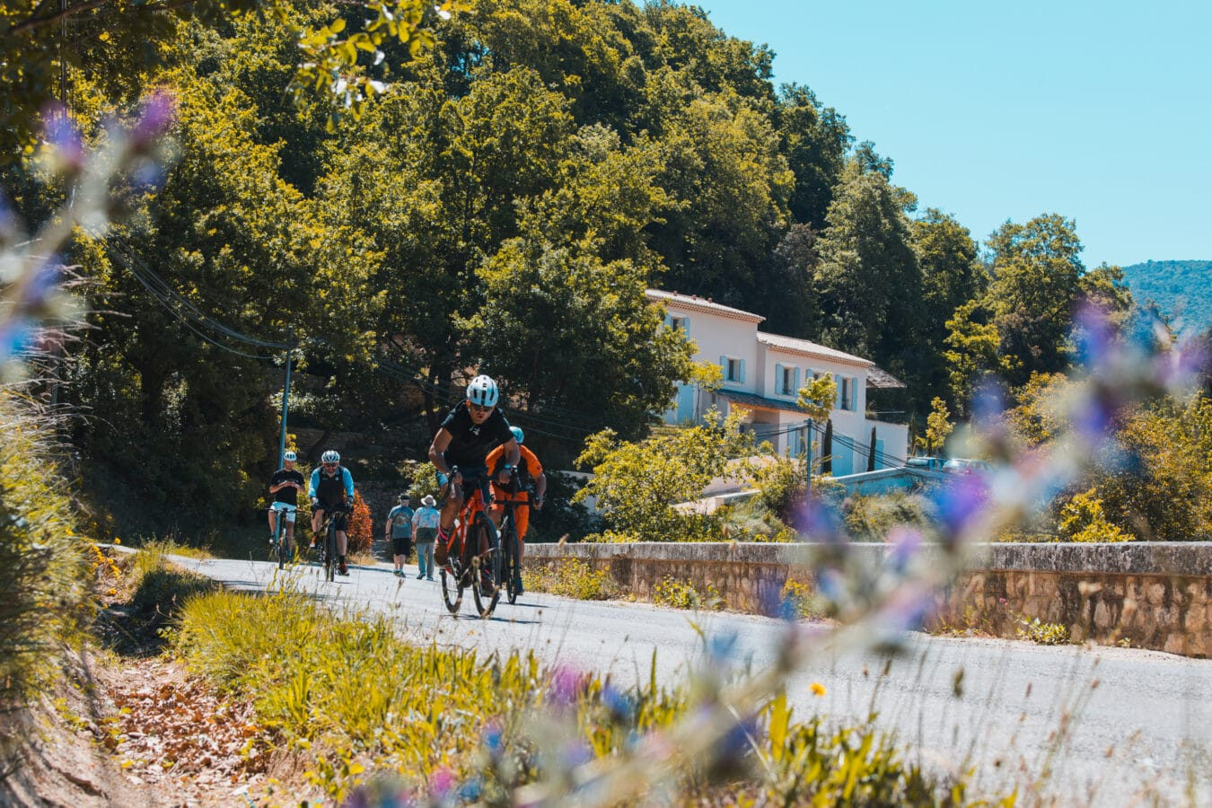 Photo de Expérience – Le Vaucluse en Vélo électrique avec Bosch eBike Systems