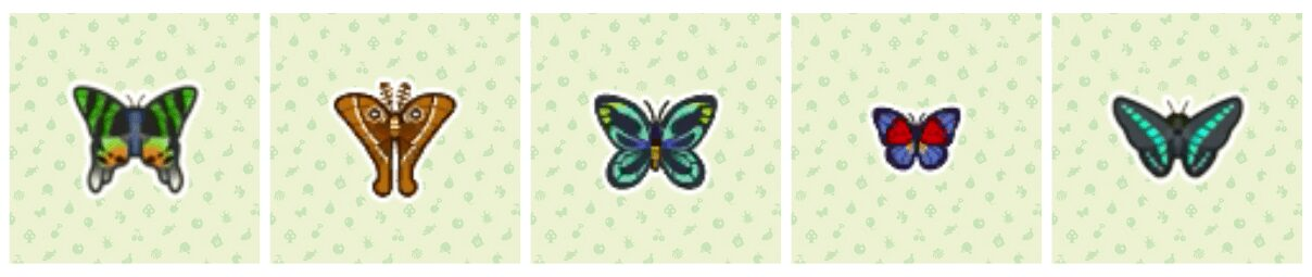 animal-crossing-new-horizons-insectes-mois-avril-sauterelle-libellule-papillons