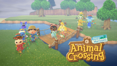 animal crossing new horizons bien equiper selection accessoires