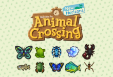 animal crossing new horizons insectes et poissons mai