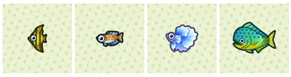 animal-crossing-new-horizons-poissons-mai-mois-partie-2