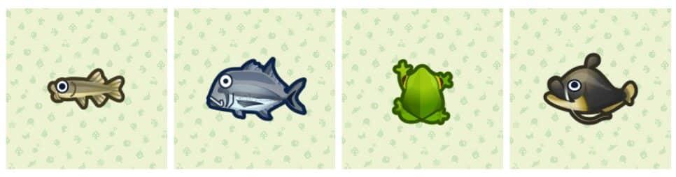 animal-crossing-new-horizons-poissons-mai-mois