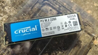 Photo de Test – Crucial P2 : L'efficacité abordable par Crucial
