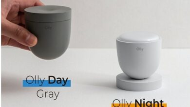 Olly Day and Olly Night