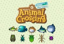 Photo of Animal Crossing New Horizons, les nouveaux insectes et poissons de juillet