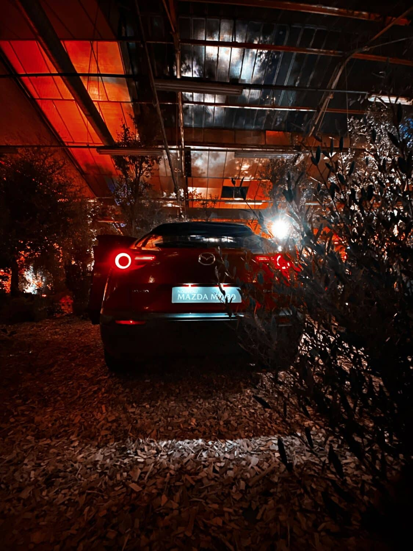 Mazda MX-30 Back
