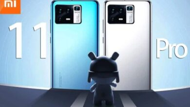 Dos du Xiaomi Mi 11 Pro