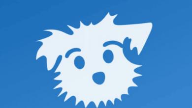Down Dog Logo