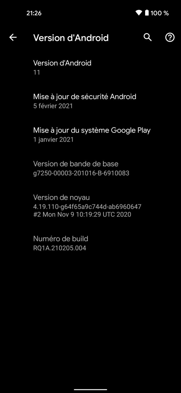Google Pixel 5 - Surcouche 2
