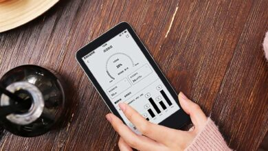 Xiaomi lance InkPalm 5, une liseuse Android compacte et abordable