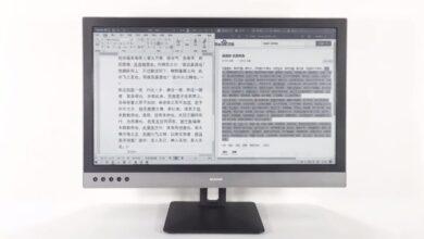Dasung Paperlike 253 : le premier écran PC à encre électronique