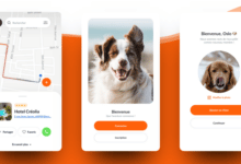 mapets-application-aider-voyager-avec-chien