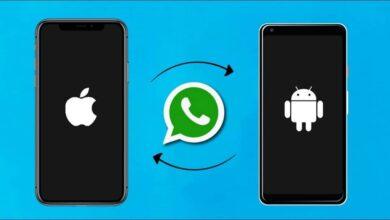 Transferer-Conversations-Whatsapp